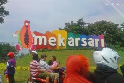 Taman Buah Mekarsari (1)