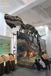 Museum Geologi-Bandung